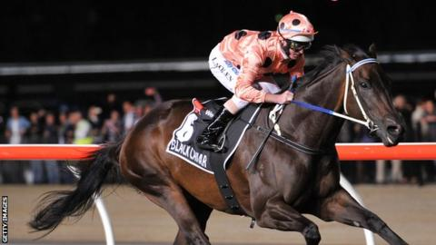 Luke Nolen rides Black Caviar to victory