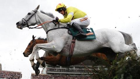 Neptune Collonges won the 2012 Grand National
