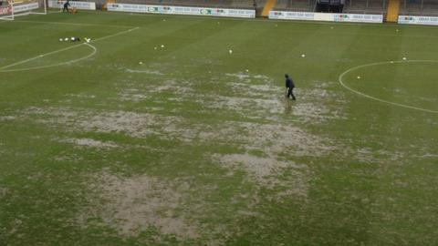 The pitch at Torquay's Plainmoor ground
