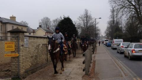 Traffic stops for thoroughbreds. There is roughly one racehorse for every six people in Newmarket. As well as 3,000 racing animals, another 2,500 horses are breeding at stud within a five-mile radius of a town which has about 18,000 human inhabitants