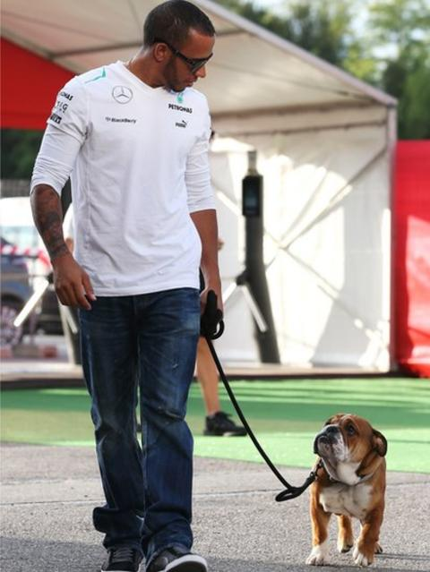 Lewis Hamilton and his new dog Roscoe