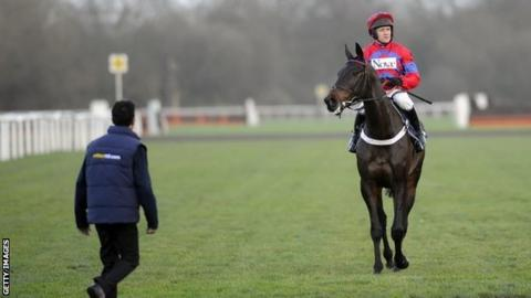 Sprinter Sacre after being pulled up at Kempton