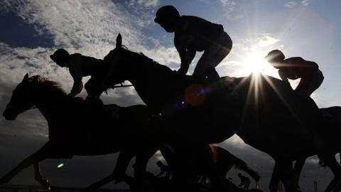 Horses silhouetted at racecourse
