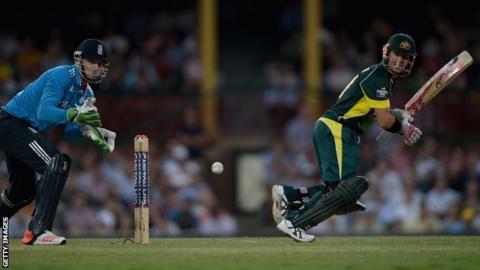 David Warner bats