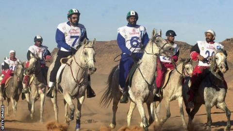 UAE riders compete in an endurance race
