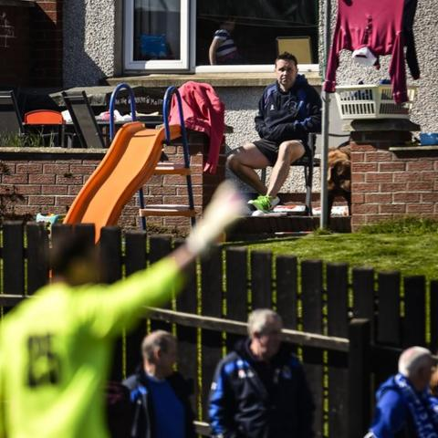 One man and his dog got a free view of the Irish Premiership match between Dungannon Swifts and Institute