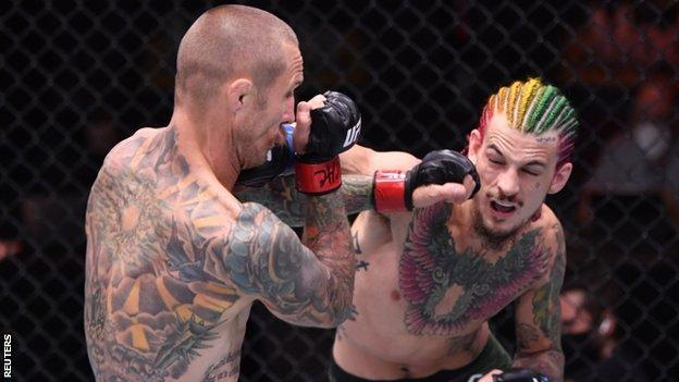 Sean O'Malley punches Eddie Wineland during their fight at UFC 250