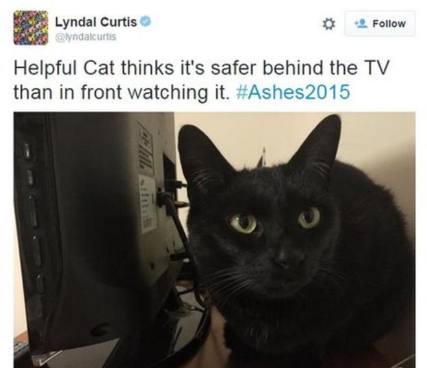 Lyndal Curtis