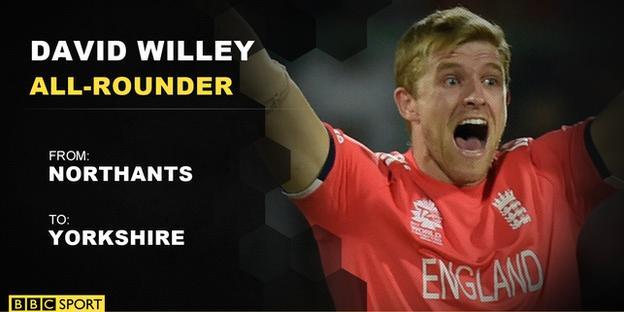 David Willey info
