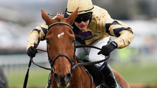 Leopardstown Betting Patterns Investigated After Melon
