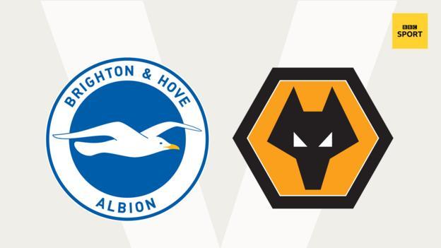 Brighton v Wolves