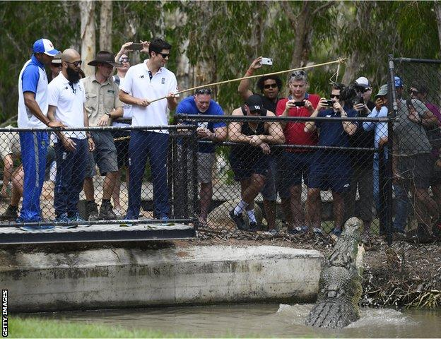 Alastair Cook and Moeen Ali feed a crocodile on their tour down under