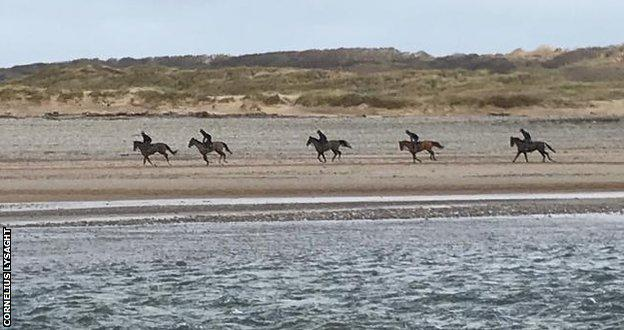 Horses training by the sea