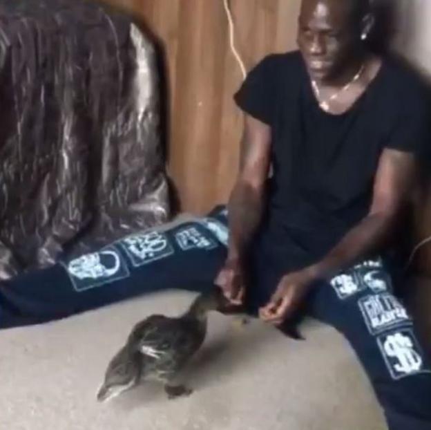 Mario Balotelli feeds ducks