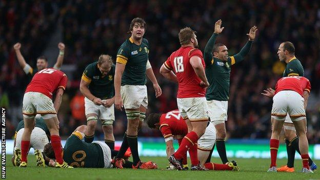 South Africa celebrate vs Wales