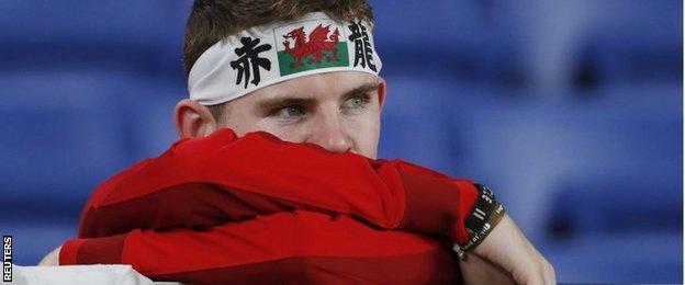 Wales fan