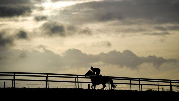 Keith Donoghue taking Envoi Allen for a gallop at Gordon Elliott's yard