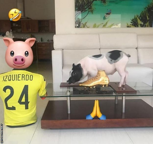 Peter the pig on a coffee table