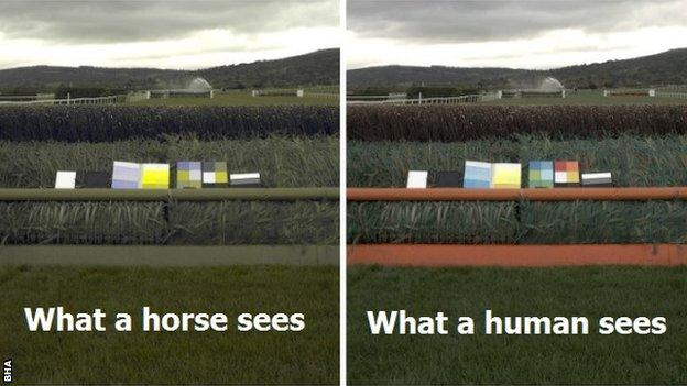 The orange framework on the right hand fence is actually seen as a shade of green by horses as in the left image