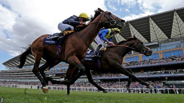 Poet's Word (right) edged in front inside the last 100 yards under jockey James Doyle to edge out stablemate Crystal Ocean