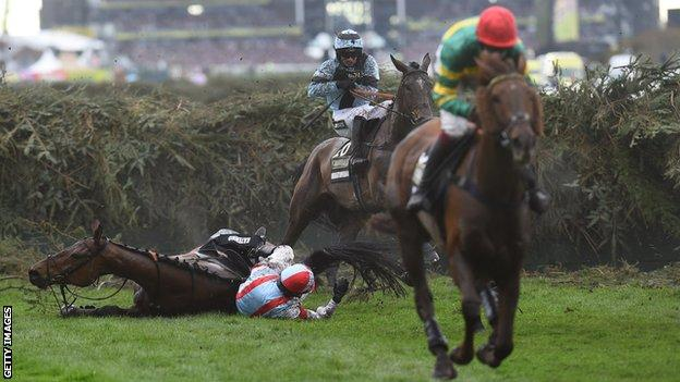 A horse falls during the Grand National at Aintree