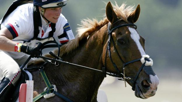 Toytown Zara Tindall S Horse Put Down For Medical Reasons