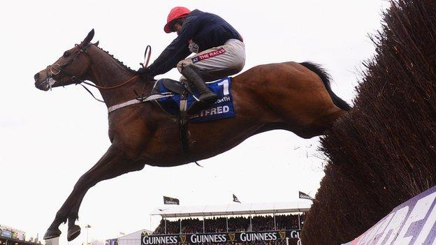 Bobs Worth clears the last hurdle at the 2013 Cheltenham Gold Cup