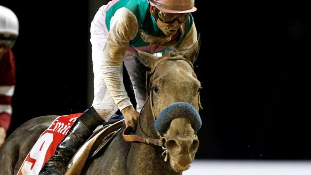 Dubai World Cup Arrogate Wins 10m Race Bbc Sport