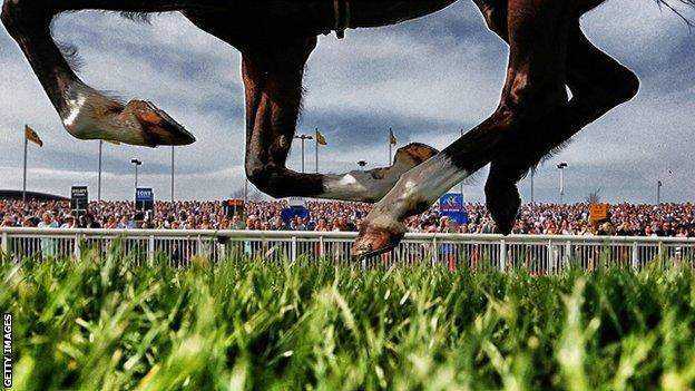 Horse runs at Aintree
