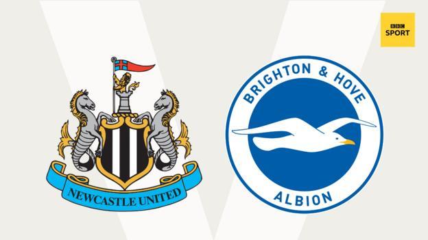 Newcastle v Brighton