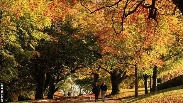 Walkers in a park in Bath