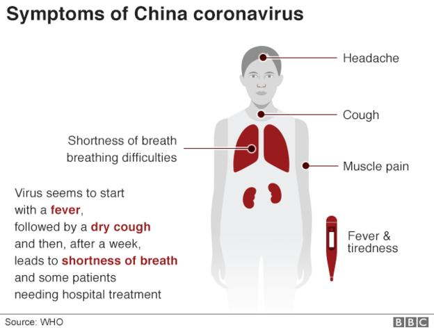 Infographic showing the symptoms of the coronavirus
