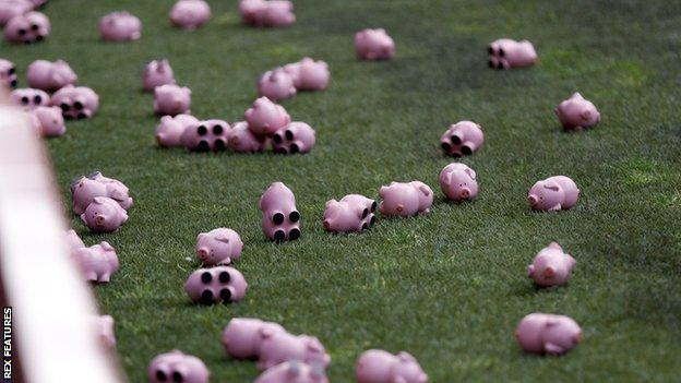 Pigs thrown on to pitch at the Valley