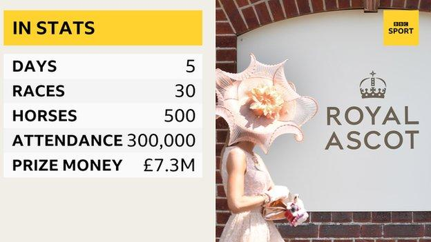 Royal Ascot in stats - 5 days, 30 races, 300,000 racegoers