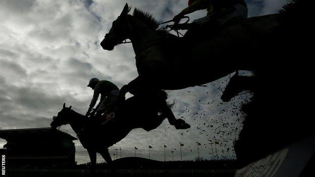 Horses at the Grand National meeting