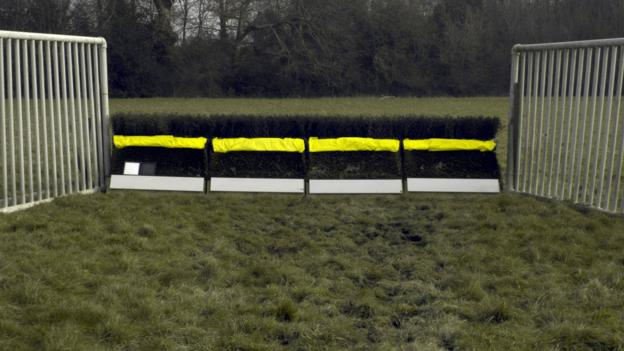 Yellow makeover to help horses see jumps in BHA trial thumbnail