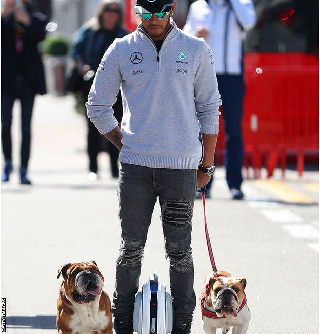 Lewis Hamilton takes his dogs for a walk
