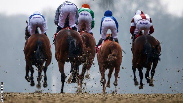 Lingfield Park races