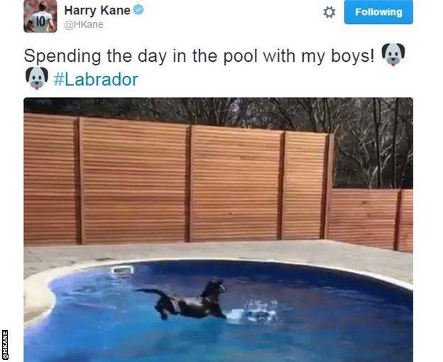 Harry Kane's swimming pool