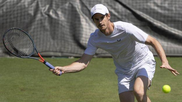 Wimbledon 2019 Preview Andy Murray Back Djokovic And Kerber Defend Titles Bbc Sport