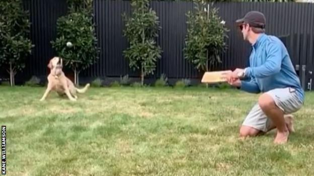 Kane Williamson and his dog