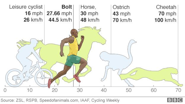 Bolt vs animals and cyclist