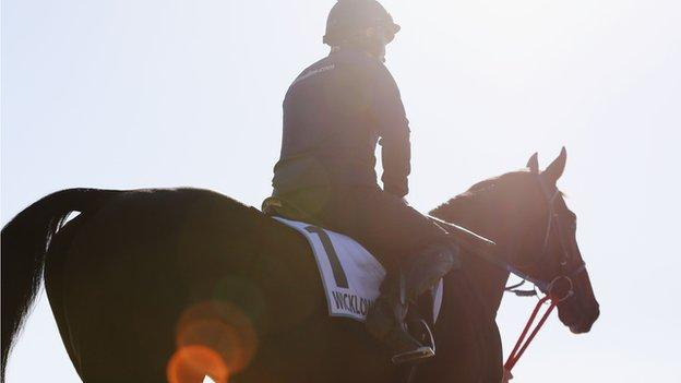 Wicklow Brave dies after American Grand National fall