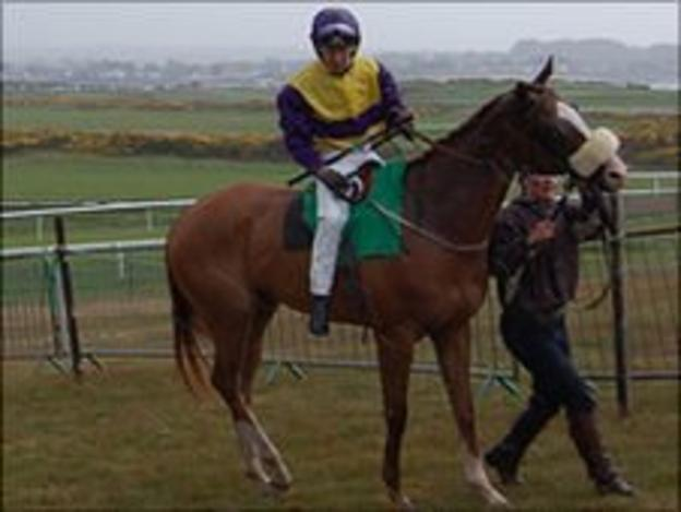 Jersey-based horse Crianza at the Guernsey race meeting at L'Ancresse Common