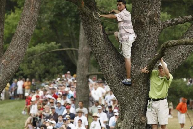 As the tension builds at Congressional fans climbs the trees