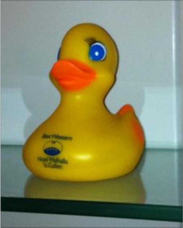 A rubber duck