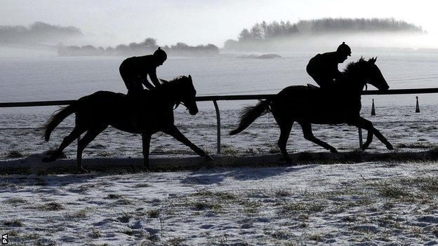Horses on icy track