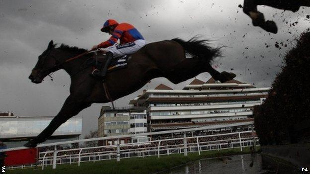 Grand National hopeful Niche Market has been retired