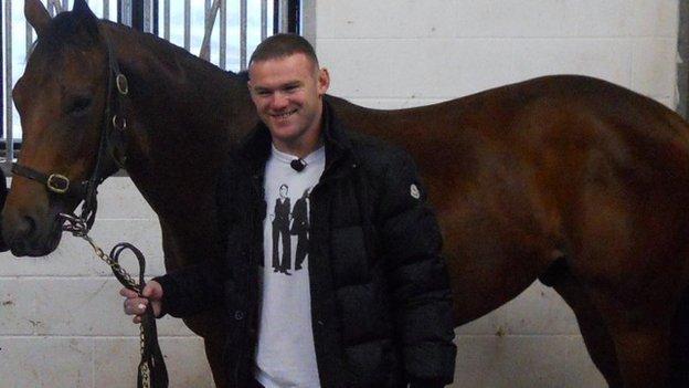 Wayne Rooney with his horse Switcharooney