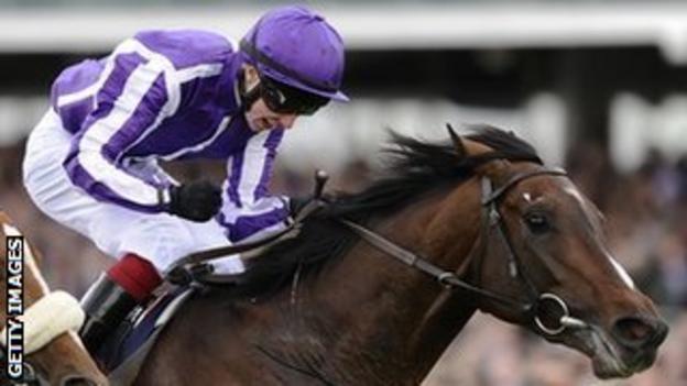 Winning horse Camelot